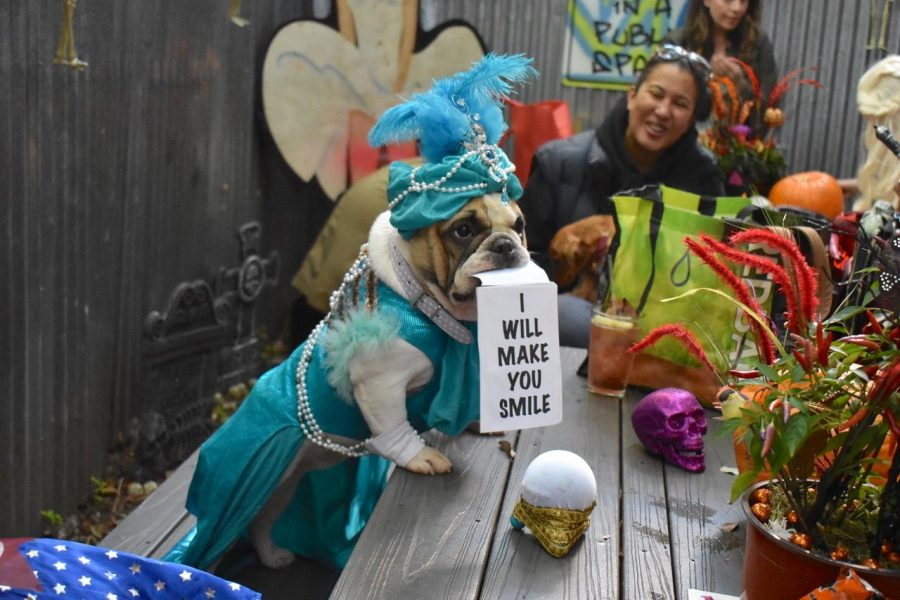 The organization Good Lower East Side took on the Tompkins Square Halloween Parade when past organizers backed out due to an insurance issue. (Photo courtesy of Abby Turbenson)