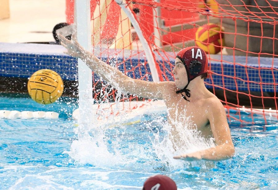 Fordham's water polo team finally hit .500 for the first time all season this past weekend (Courtesy of Fordham Athletics).