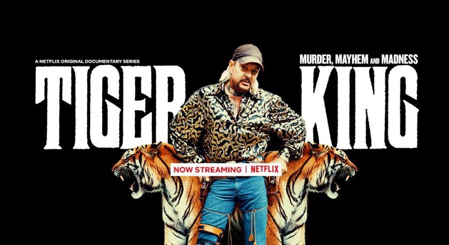 Tiger King has taken the world by storm. (Courtesy of Facebook)