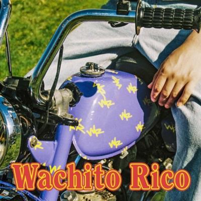 "Boy Pablo's latest album, ""Wachito Rico,"" dropped on Oct. 23. (Courtesy of Facebook)"