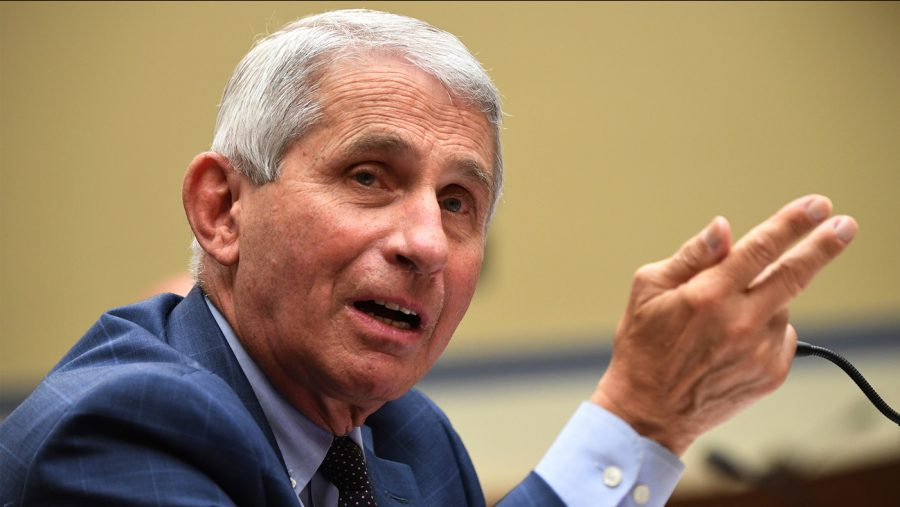 Dr. Fauci's rise in popularity during the COVID-19 pandemic may be one reason why more college students applied to medical schools last year than in years prior. (Courtesy of ABC7).