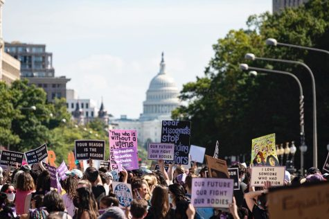 Recent Women's Rights Protests Expose Lack of Unity
