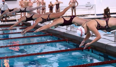 Men & Women Secure Wins in Swimming & Diving