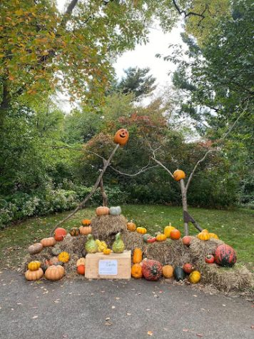 Scarecrows and Pumpkins: NYBG's Newest Event